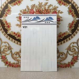 Gạch 25x40 Thành Phát V21