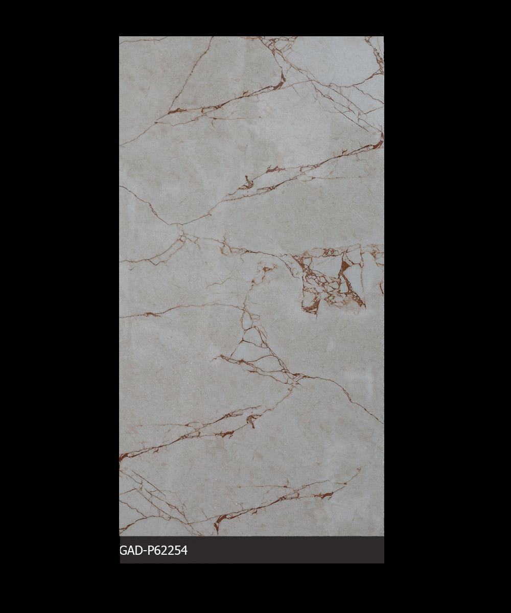 Gạch Ấn Độ 600mm*1200mm GAD-P62254