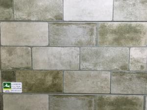 Gạch Bạch Mã 300x300mm H30501