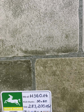 GẠCH BẠCH MÃ 300X600MM H36014