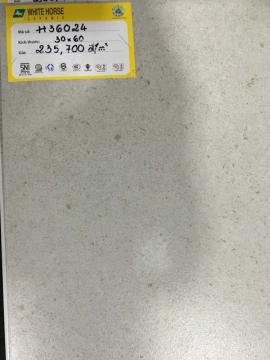 GẠCH BẠCH MÃ 300X600MM H36024