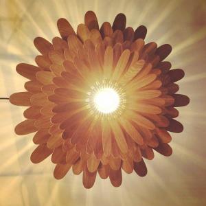 Đèn Gỗ Hoa Cúc Woodlamp Tr003