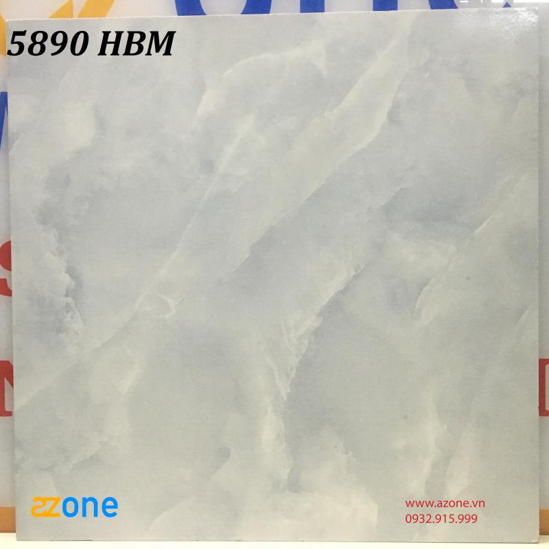 Gạch 500mm*500mm 5890 HBM
