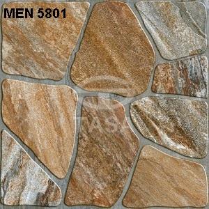 Gạch Tasa 500mm*500mm Men 5801