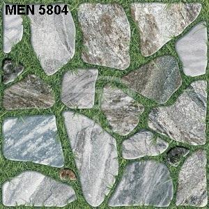 Gạch Tasa 500mm*500mm Men 5804