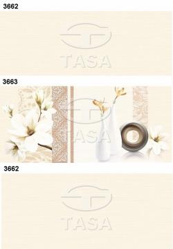 Gạch TASA ốp lát 300x600 3662 - 3663 TASA
