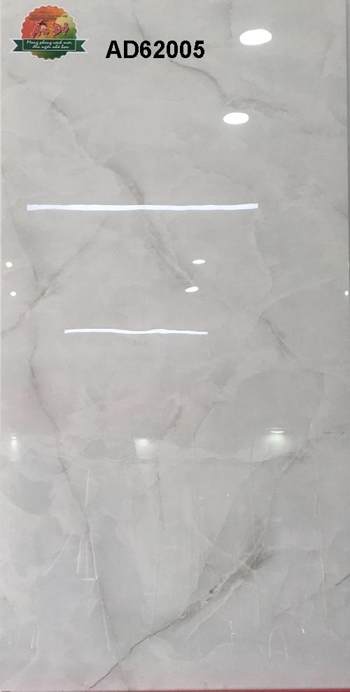 Gạch Ấn Độ 600x1200mm AD62005