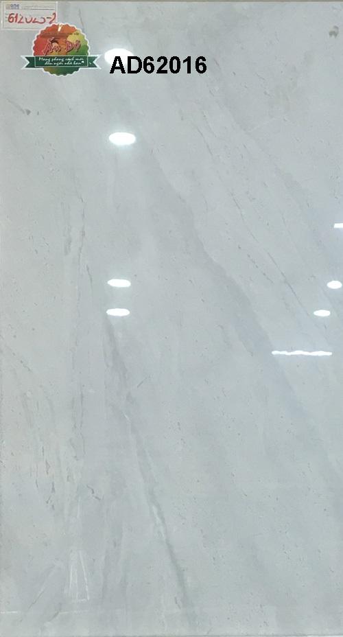 Gạch Ấn Độ 600x1200mm AD62016