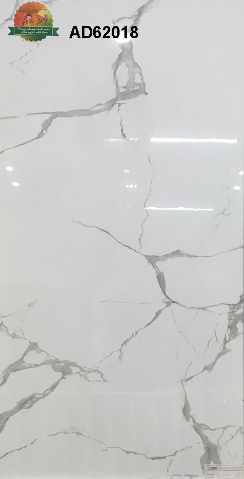Gạch Ấn Độ 600x1200mm AD62018