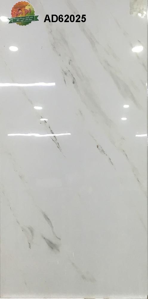 Gạch Ấn Độ 600x1200mm AD62025