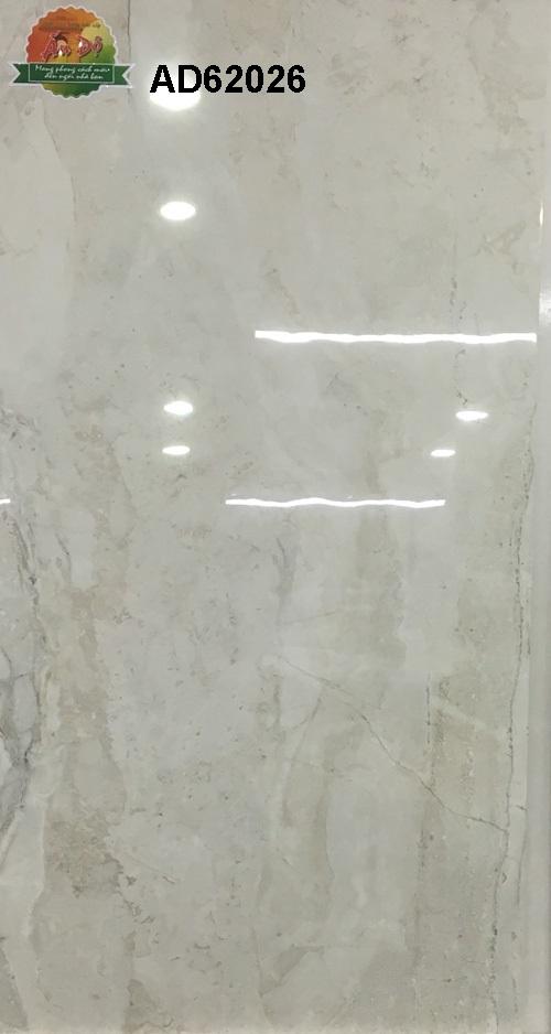 Gạch Ấn Độ 600x1200mm AD62026