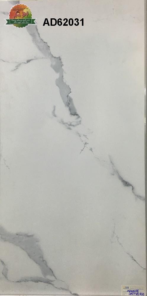 Gạch Ấn Độ 600x1200mm AD62031