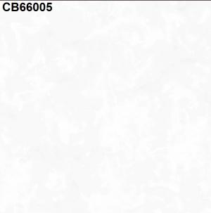 Gạch lát nền 600mm*600mm CB66005