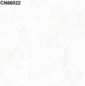 Gạch lát nền 600mm*600mm CN66022