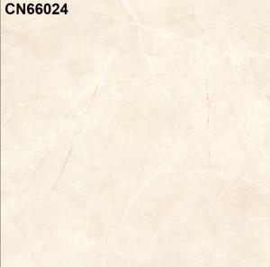 Gạch lát nền 600mm*600mm CN66024