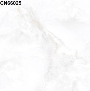 Gạch lát nền 600mm*600mm CN66025
