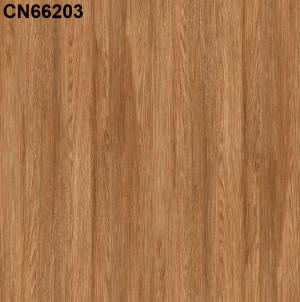 Gạch lát nền 600mm*600mm CN66203