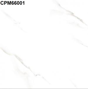 Gạch lát nền 600mm*600mm CPM66001