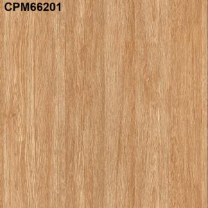 Gạch lát nền 600mm*600mm CPM66201