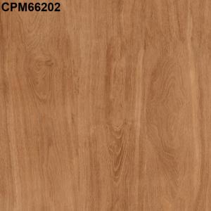 Gạch lát nền 600mm*600mm CPM66202