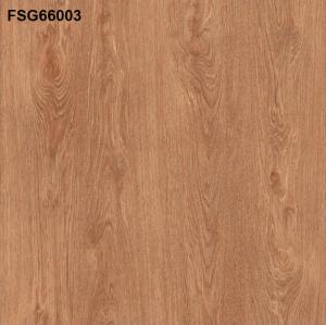 Gạch lát nền 600mm*600mm FSG66003