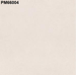 Gạch lát nền 600mm*600mm PM66004