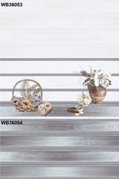 Gạch TTC ốp lát 30x60 WB36053-DB36053-WB36054