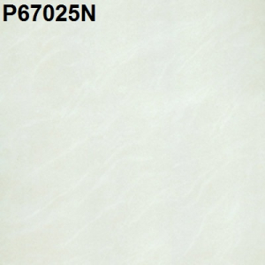 Gạch lát nền 600mm *600mm P67025N